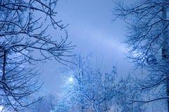 burza śnieżna Obrazy Royalty Free