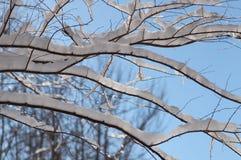 burza śnieżna krajobrazowa zimy Obrazy Stock