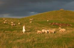 burza pastwiska Obrazy Royalty Free