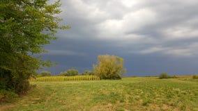 Burza przychodzi nad polem fotografia stock
