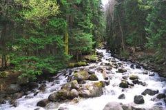 Burzowa halna rzeka z skałami na brzeg obrazy stock
