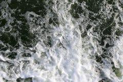Burzowa zatoczka fala i piana w przepływie pluśnięcia, gulgoczą wewnątrz, fala, strumień, czochry i grzebienie fala w szybkim las Zdjęcia Royalty Free