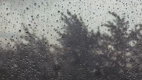 Burzowy dzień, nadokienny szkło behind z waterdrops i drzewa, zbiory