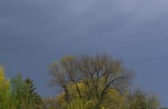 Burzowy jesieni niebo Obrazy Royalty Free