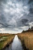 Burzowy niebo krajobraz nad bagnami w wsi Obraz Royalty Free