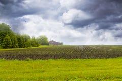 burzowy rolny niebo Zdjęcie Royalty Free