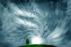 burzy obłoczny drzewo Fotografia Stock