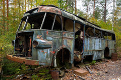 Bus. Decaying in the woods Stock Images