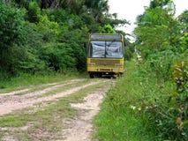 Bus in bos Royalty-vrije Stock Afbeeldingen
