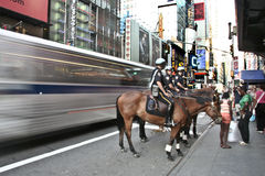 Bus contro il cavallo Fotografia Stock Libera da Diritti