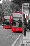 Bus di Londra sul movimento Immagini Stock Libere da Diritti
