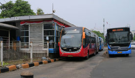 Bus di TransJakarta Fotografia Stock