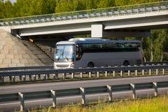 Bus goes on highway under bridge Royalty Free Stock Image