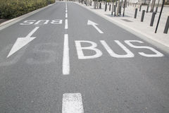 Bus Lane Arrow. In Urban Setting Royalty Free Stock Images