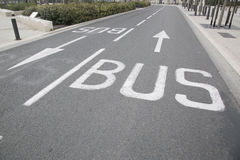 Bus Lane Arrow. In Urban Setting Stock Image