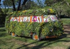 Bus met pansies van vele kleuren wordt behandeld die stock foto