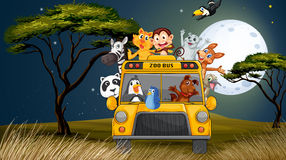 A bus near the trees full of animals Stock Photography