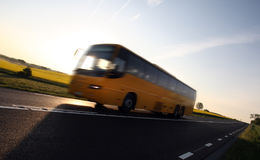 Bus and Oilseed Stock Image