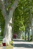 Bus reist hinunter eine Landstraße von Bäumen gesäumt Stockfoto