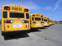 Bus Row Royalty Free Stock Photos