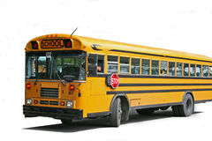Bus School Royalty Free Stock Image