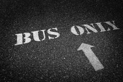 Bus Only Sign Painted on Roadway Asphalt for Direction Royalty Free Stock Photo
