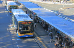 Bus station commuters Brisbane Australia Stock Images