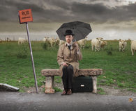 Bus Stop. Gentleman with umbrella sitting on a park bench at a bus stop Stock Photography