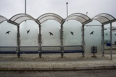 Bus stop with frosted glasses. Empty bus stop with glass panes frosted from cold weather Stock Photography