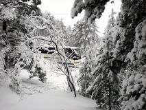 Bus transporting tourists in winter. Snowy winter scenery, bus transporting tourists royalty free stock images