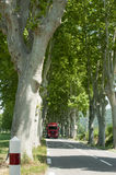 Bus travels down a tree-lined highway. Red bus travels down a tree lined highway in the rural area of Provence in the Country of France in the summer Stock Photo