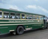 Bus van het Denali de Nationale Park stock fotografie