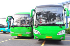 Bus verde Immagine Stock