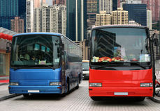 Bus waiting for tourists. Blue and red buses waiting for the tourists Stock Photography