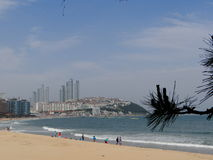 Busan hav kust Arkivbild