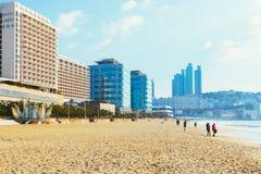 Haeundae beach and modern building in Korea. Busan, Korea - January 6, 2015 : Haeundae beach and modern building in Busan, Korea Stock Images