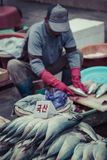 BUSAN - 27 OKTOBER, 2016: Verse vissen en zeevruchten in Jagalchi Fis stock fotografie