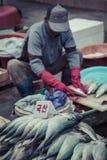 BUSAN - 27 OTTOBRE 2016: Pesce fresco e frutti di mare a Jagalchi Fis fotografia stock