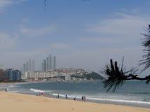 Busan, overzeese kust Stock Fotografie
