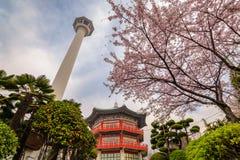 Busan torn, Korea royaltyfri fotografi