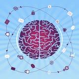 Busca/pesquisa do cérebro Fotografia de Stock