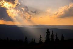 Buscat solnedgång Arkivfoto