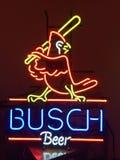 Busch en néon photos stock
