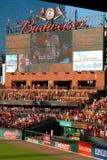 Busch Stadion Stockfotografie