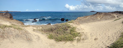 Busch- und San-Dünen durch den Ozean Stockbilder