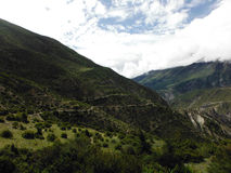 Buschige grüne Landschaft des hohen Annapurna-Tales Stockfotos