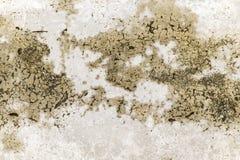 Buse och knäckt cementgolvtextur Royaltyfri Bild