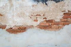 Buse- och skadevägg med betong- och tegelstenbakgrund Royaltyfria Foton