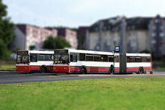 Buses. Two buses on bus stop in the city Royalty Free Stock Images