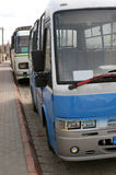 Buses. Row of Turkish buses, with a blue one at the front Stock Photos